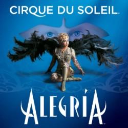 Cirque du Soleil: Alegría – Budapest