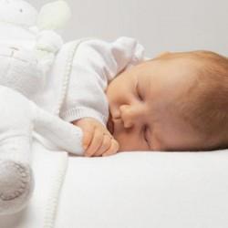Sikeres szívátültetést hajtottak végre egy csecsemőn