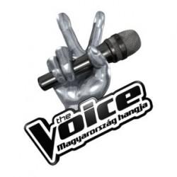 7 milliót kapnak a The Voice Mesterei