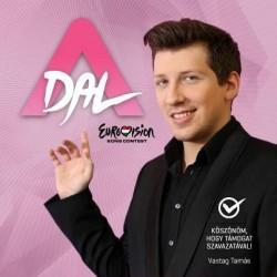 A Dal 2013: második elődöntő