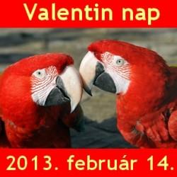 Valentin nap 2013: szerelmespárokat vár a Budapesti Állatkert