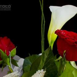 A virág Gyönyörű ékszer – feledhetetlen ajándék lehet (FKSZ Fotó: www.fksz.hu)