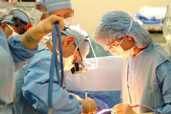 transzplantacio